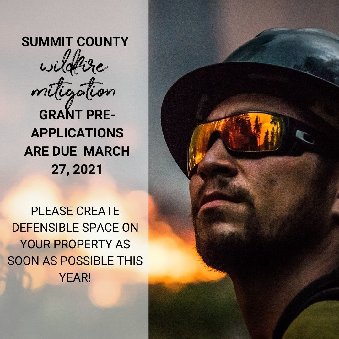 Summit County Wildfire Mitigation Grants